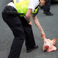 EDL Assault Police with Severed Pigs Heads