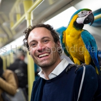 Italian performer with his macaw parrot on the Jubillee Line, London Underground. London.© Jess Hurd/reportdigital.co.uk